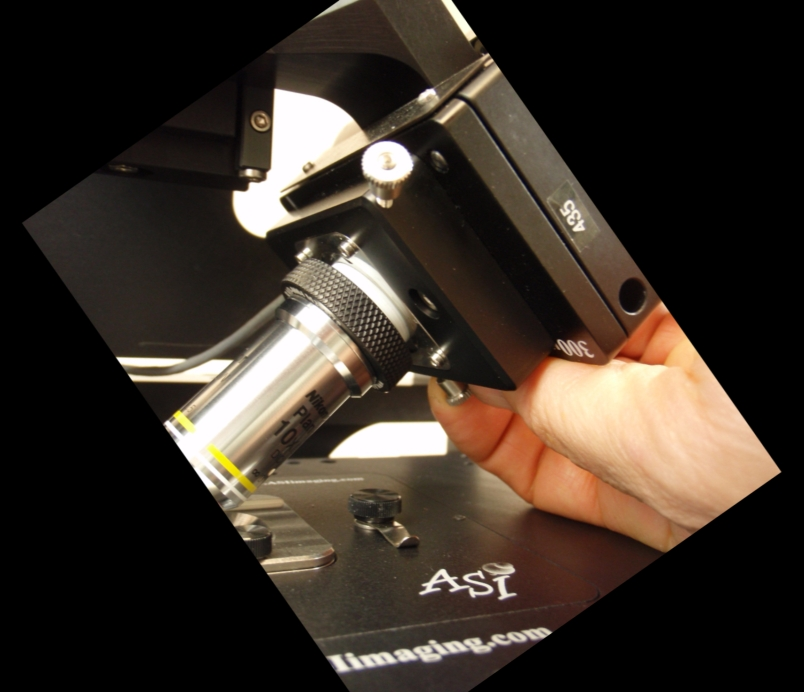 vertical objective position adjuster is used to lower the objective when changing lenses