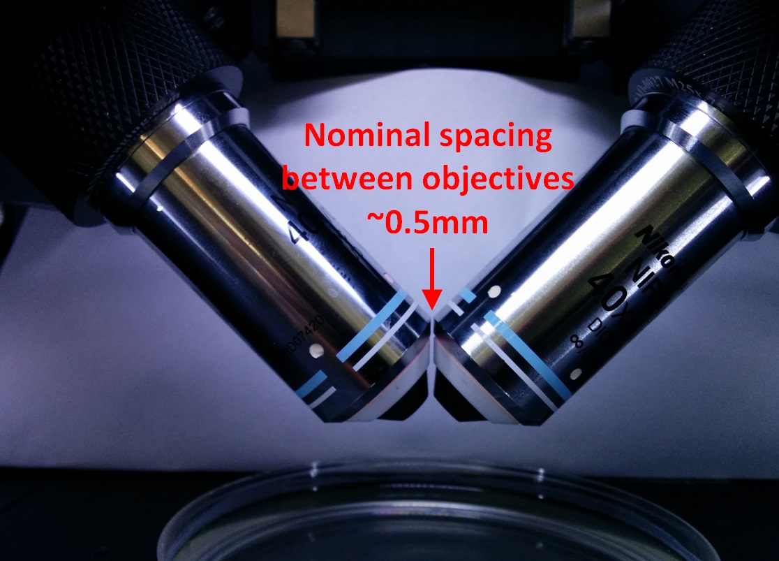 Co-focused objectives with ~0.5 mm nominal gap